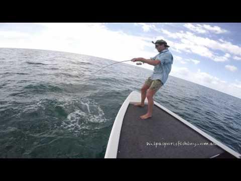 Weipa Sports Fishing - Topwater Madness