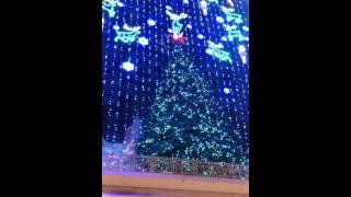 Wanamaker Organ - O Christmas Tree - 2010 light and organ spectacular