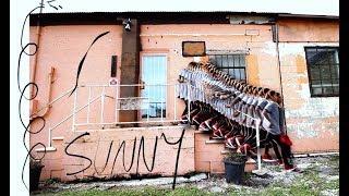 Sunny Fritz - nowadays