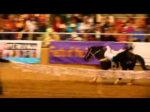 Griffith Trickriding at Fiesta 2011.mov