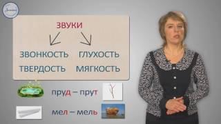 Русский 1 Согласные звуки и их буквы