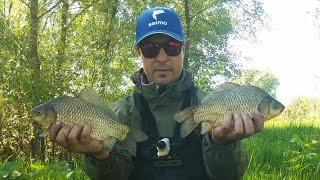 Ловля Крупного Карася на Фидер. Рыбалка на реке весной