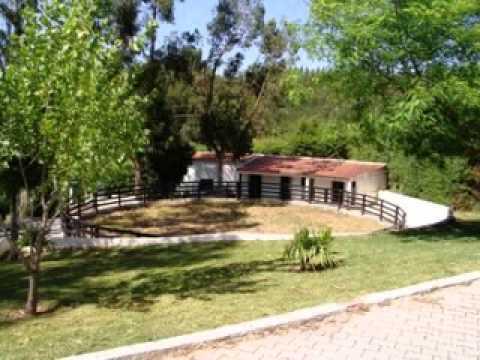 Quinta para Venda em Pêro Moniz, Cadaval, Lisboa