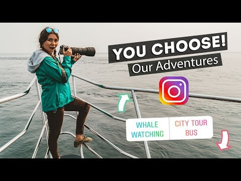 Instagram Followers CONTROL OUR TRAVELS!   Victoria, Canada
