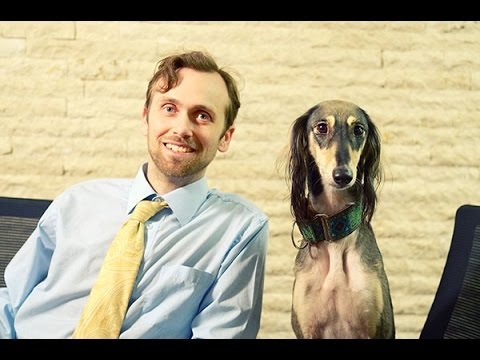 Meet Our Veterinary Nutrition Expert, Dr. Justin Shmalberg