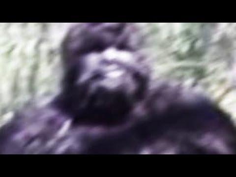 Bigfoot Texas Captured by Camera