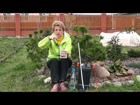 Искра Двойной Эффект — чем опрыскивать растения от вредителей?