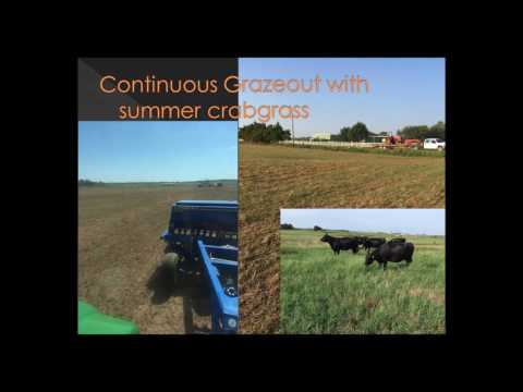 Grazing Cropping Systems in Oklahoma