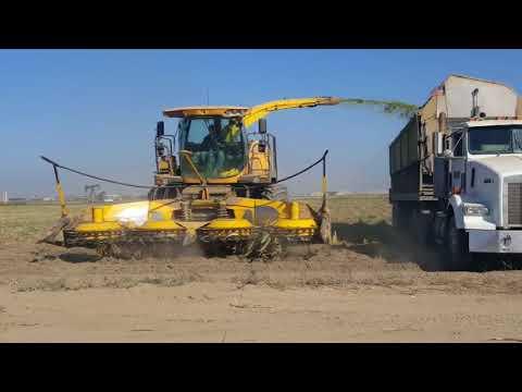 Farm Technic: Corn Silage Harvest 2017