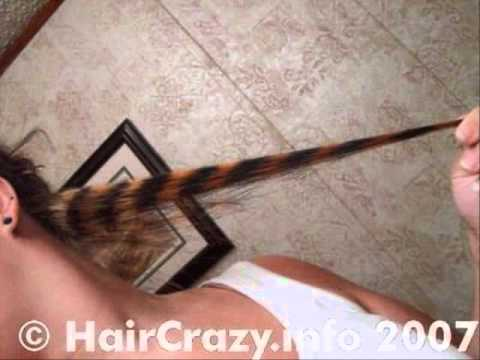 How to do a Raccoon Tail in your Hair - YouTube