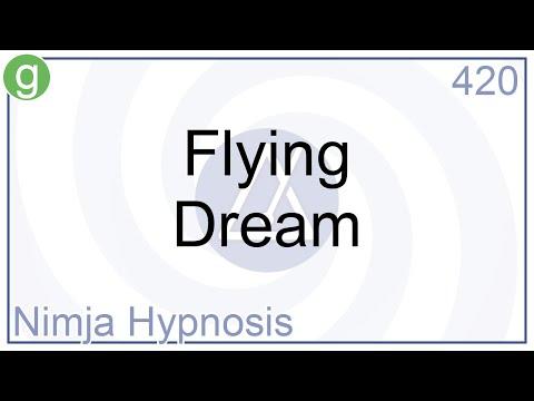 Hypnosis - Flying Dream