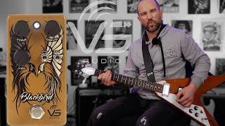 Turn a Marshall into a Fender? - VS Audio Blackbird Dirt Box!
