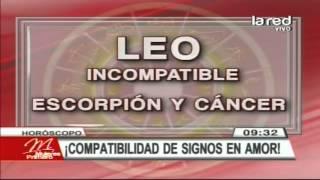 Compatibilidad de los signos en el amor: Leo