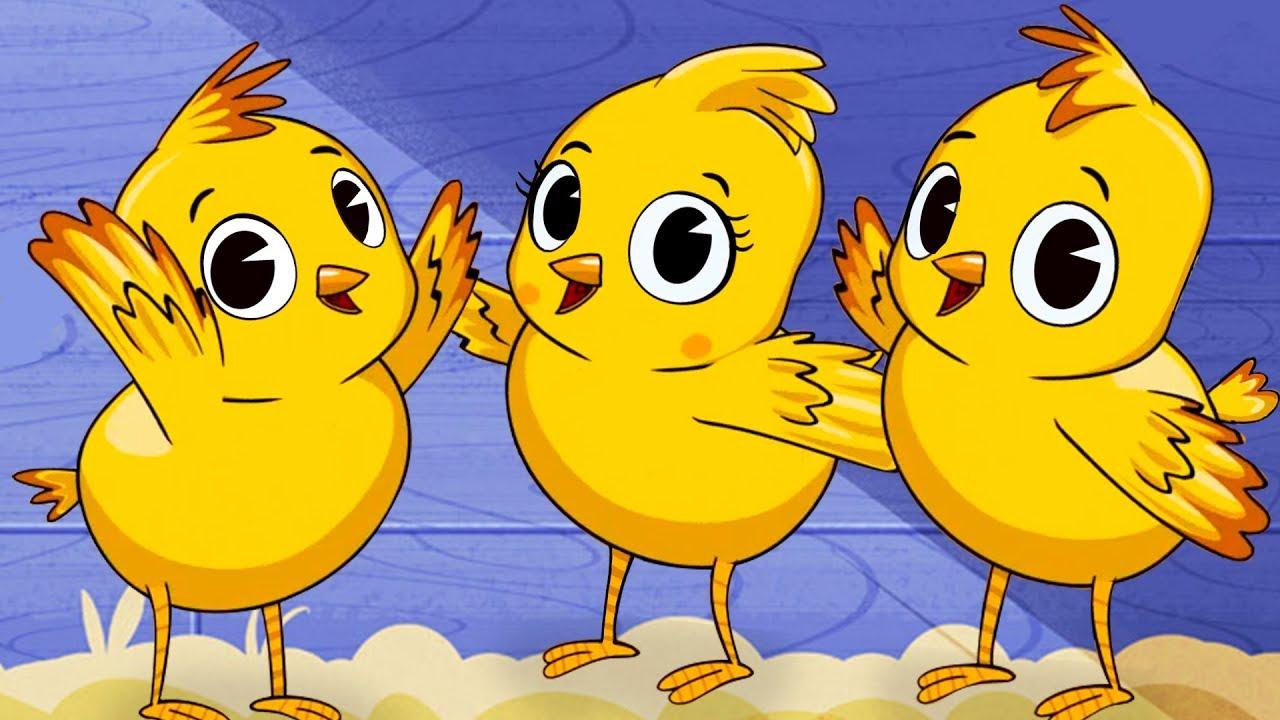 Los pollitos dicen pio pio canciones infantiles youtube - Dibujos pared habitacion infantil ...
