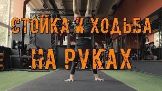 Как научиться ходить на руках с нуля? Все подсобные упражнения - Макс Докучаев. Crossfit IDOL. #17
