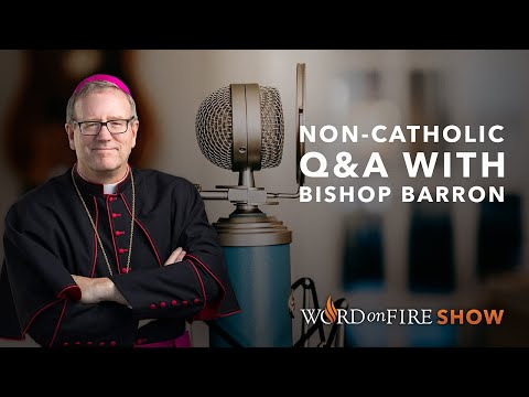 non-catholic-q&a-w/-bishop-barron-(august-2020)