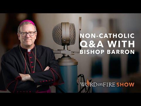 Non-Catholic Q&A w/ Bishop Barron (August 2020)