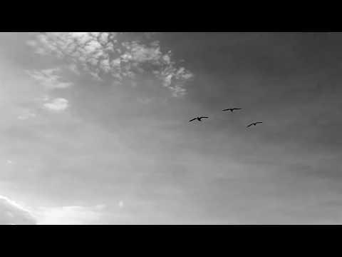 Brieg Guerveno - video officielle - 'vel pa vefemp