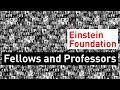 Fellows & Professoren der Einstein Stiftung Berlin
