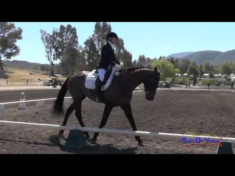 253D Barbara Flynn on P K  Cooper Training Horse Dressage Galway Downs April 2016