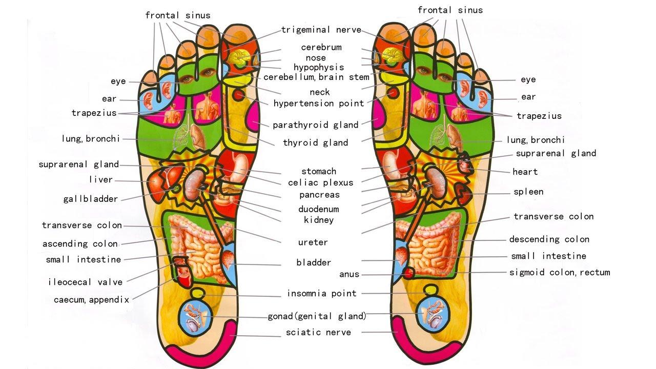 pressure points diagram massage lan wiring foot self techniques chinese footmassage footreflexology chinesefootreflexology