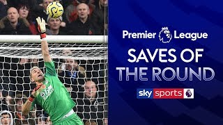 The BEST Premier League Saves of the Weekend | Match Day 12