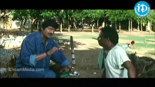Babu mohan, Mohan babu Ultimate Comedy - Collectorgaru Movie