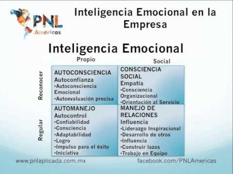 Inteligencia Emocional en la Empresa - YouTube