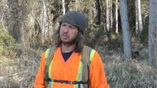 Planting A Box Of Trees, Fast Oil Lease