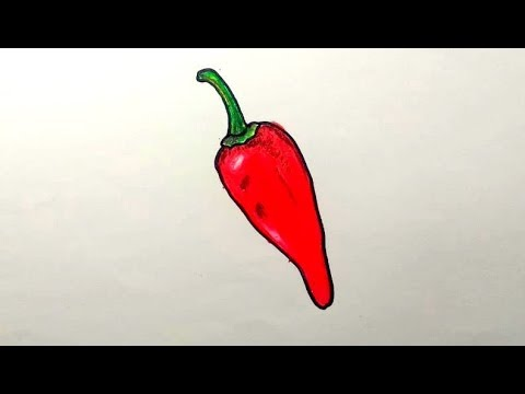 How To Draw Chilli Step By Step - Chilli Pepper Drawing