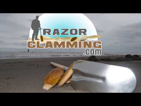 Learn How Resturants Clean Razor Clams (great tips and tricks)