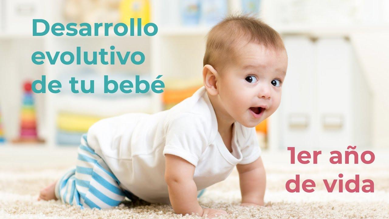 Desarrollo Evolutivo del bebé durante el primer año de vida