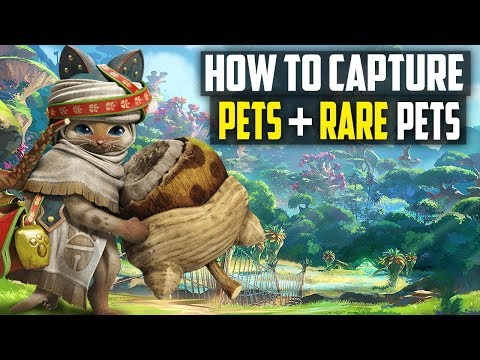 How To FIND and CAPTURE RARE Pets In Monster Hunter World! MH World Tips and Tricks