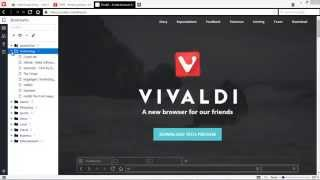 Vivaldi Web Browser: A New Browser from the former CEO of Opera