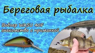 Береговая рыбалка TsuYoki WASU 40F знакомство с приманкой