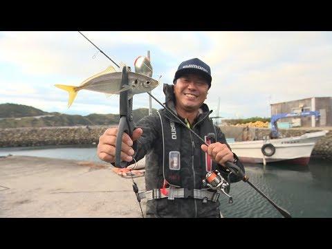 【いつでも釣り気分!】#284 これぞアジングの醍醐味! 愛媛県日振島でライトソルトゲーム