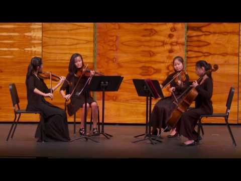 Spring Chamber Music Recital (May 6, 2017)