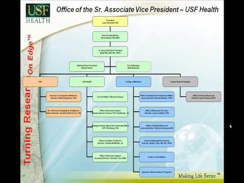 Organizational Structure - USF Office of Research and Graduate