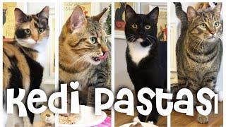 Kedi Pastası - ( Ciğerli & Yulaflı ) thumbnail