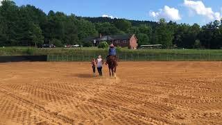 Alina vs Horse