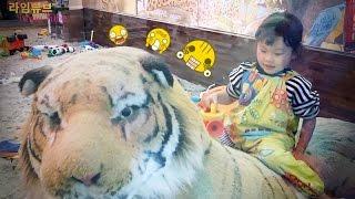 샌드주 모래 놀이 키즈카페 동물원 장난감 자동차 슈팅 Sand Play Kids Zoo Cafe Toys Play Car Игрушки 뽀로로 라임튜브