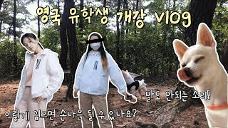 vlog) 어쩌다 한국에서 개강 | 스포츠의학과 | 아…