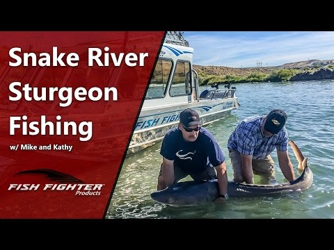 Fish Fighter Products Sturgeon Fishing the Snake River