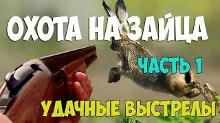 Охота на зайца .Удачные выстрелы - часть первая. The hunting of the hare