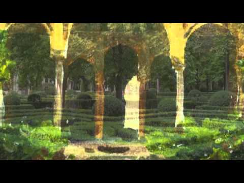 "(HD 720p) Joaquin Rodrigo's ""Concierto de Aranjuez"", John Williams"