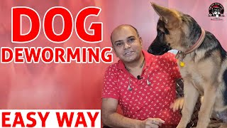 Deworming of DOG  Easy Way to Deworm your Puppy at Home    Dog Care Information    Baadal Bhandaari
