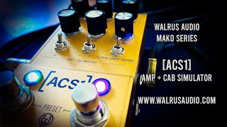 Walrus Audio: ACS1 Amplifier and Cabinet Simulator