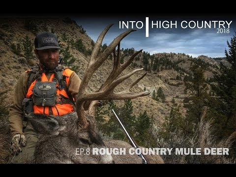Rough Country Mule Deer