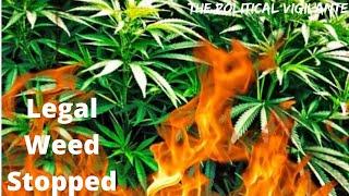 Dem Congress Killed Cannabis Reform During Impeachment Distraction — The Political Vigilante