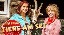 Bibi & Tina - Tiere am Set VOLL VERHEXT! Kinofilm DVD SPECIAL